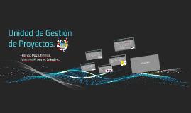 Unidad de Gestión de Proyectos.