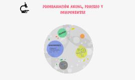 PROGRAMACIÓN ANUAL, PROCESO Y COMPONENTES
