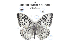 Copy of The Montessori School of Englewood New School Expo Presentation