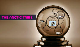 The Arctic Tribe