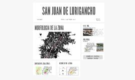 SAN JUAN DE LURIGANCHO