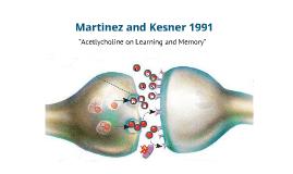 Martinez and Kesner (1991)