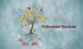 Professional Practicum