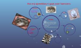Hoi mij spreekbeurt gaat over hamsters