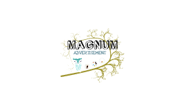 Copy of Copy of Advertisement - MAGNUM