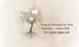Song of Solomon by Toni Morrison : Nature IOP