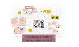 Copy of Organización efectiva y cultura organizacional