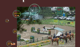 The Plant Cell vs. A Horse Show