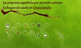La empresa española que permite cultivar lechugas sin suelo