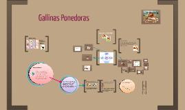 Gallinas Capacitación