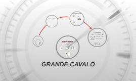 GRANDE CAVALO