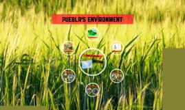puebla's environment