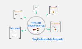 Copy of Tipos de Presupuestos y su Clasificacion