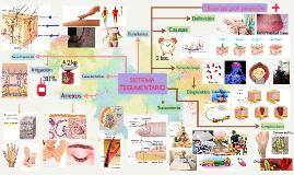 Sistema Tegumentario - Úlceras por presión
