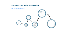 Copy of Enzymes to Produce Penicillin