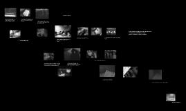 Copy of Visual Rhetoric Project