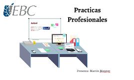 Martín Monroy Prácticas Profesionales.