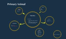 Primary Animal
