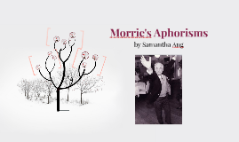Morrie's Aphorisms