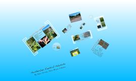 APES Habitat