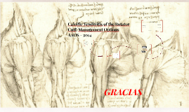 Calcific Tendinitis of the Rotator