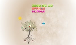Barnus