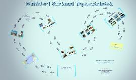MET 2014 Buffaloi tapasztalatok