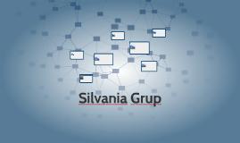 Silvania Grup