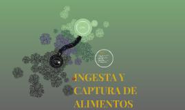 INGESTA Y CAPTURA DE ALIMENTOS