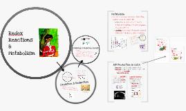 Redox Reactions & Metabolism