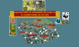 AGROFORESTERÍA CON COMUNIDADES DEL RÍO LEÓN