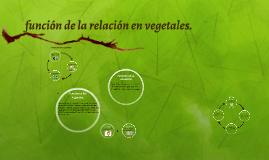 funcion de la relacion en vegetales y animales.