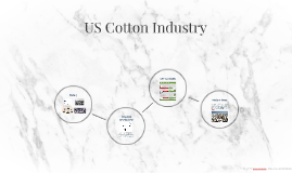 US Cotton Industry
