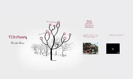 Copy of TEDx Poverty/Jobs