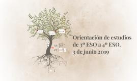 Orientación de estudios en 3º ESO.