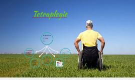 Tetraplegie sexualfunktion
