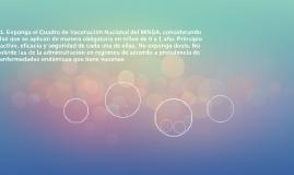 1. Exponga el Cuadro de Vacunación Nacional del MINSA, consi
