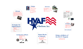 HVAF Service Delivery Analysis
