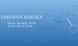 ENXEÑERÍA XENÉTICA