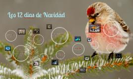 Los 12 dias de Navidad