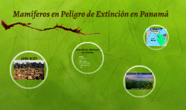 Endangered Species of Panama