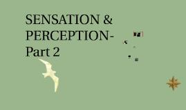 IP-MH-CH. 4-SENSATION & PERCEPTION-Part 2