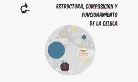 Estructura, composicion y funcionamiento