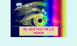 Sentido de la visión
