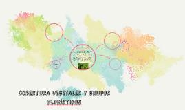 cobertura vegetales y grupos floristicos