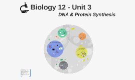 Biology 12 -