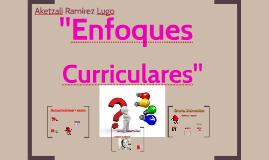 Enfoques Curriculares