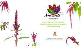 Copy of presentacion amaranto jueves 1