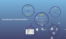 Copy of Introduction to Animal Welfare 2.0