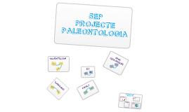 PROJECTE PALEONTOLOGIA